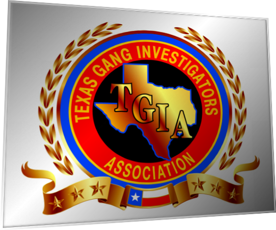 Asian gang investigators association